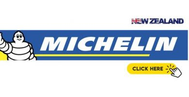 Michelin Logo NZ